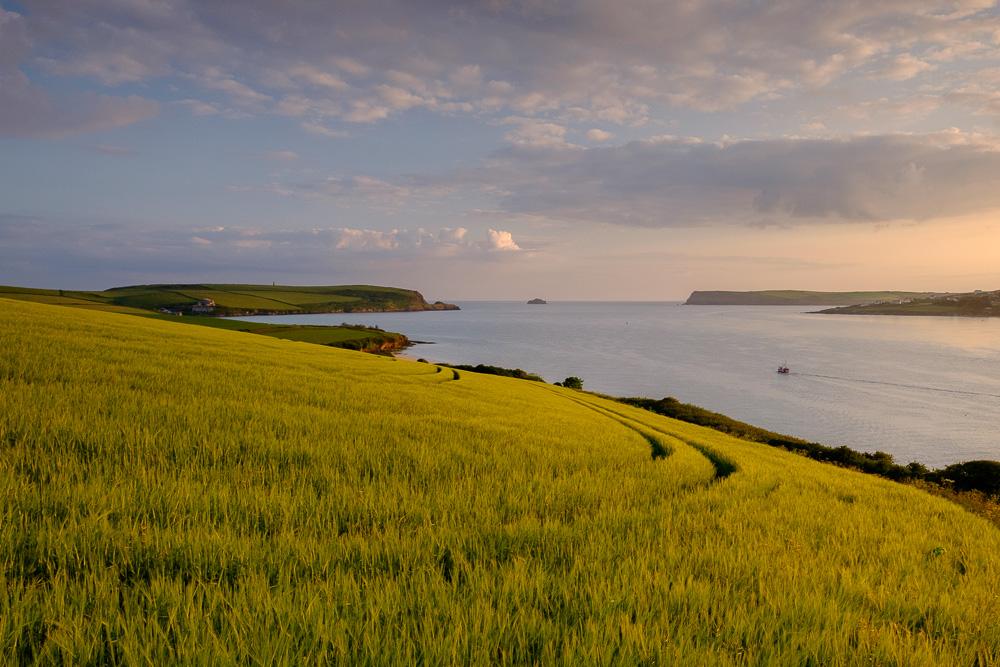Camel Estuary, Padstow, Cornwall at dawn
