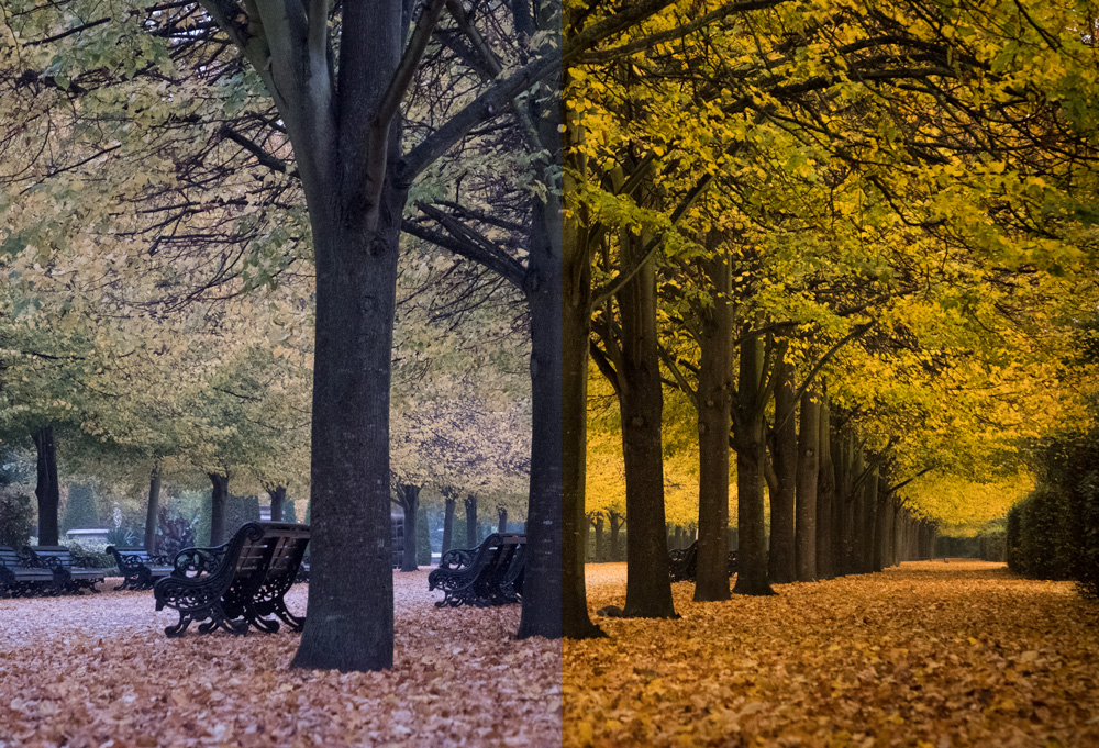 Fuji X-T2 RAW file pre and post editing comparison