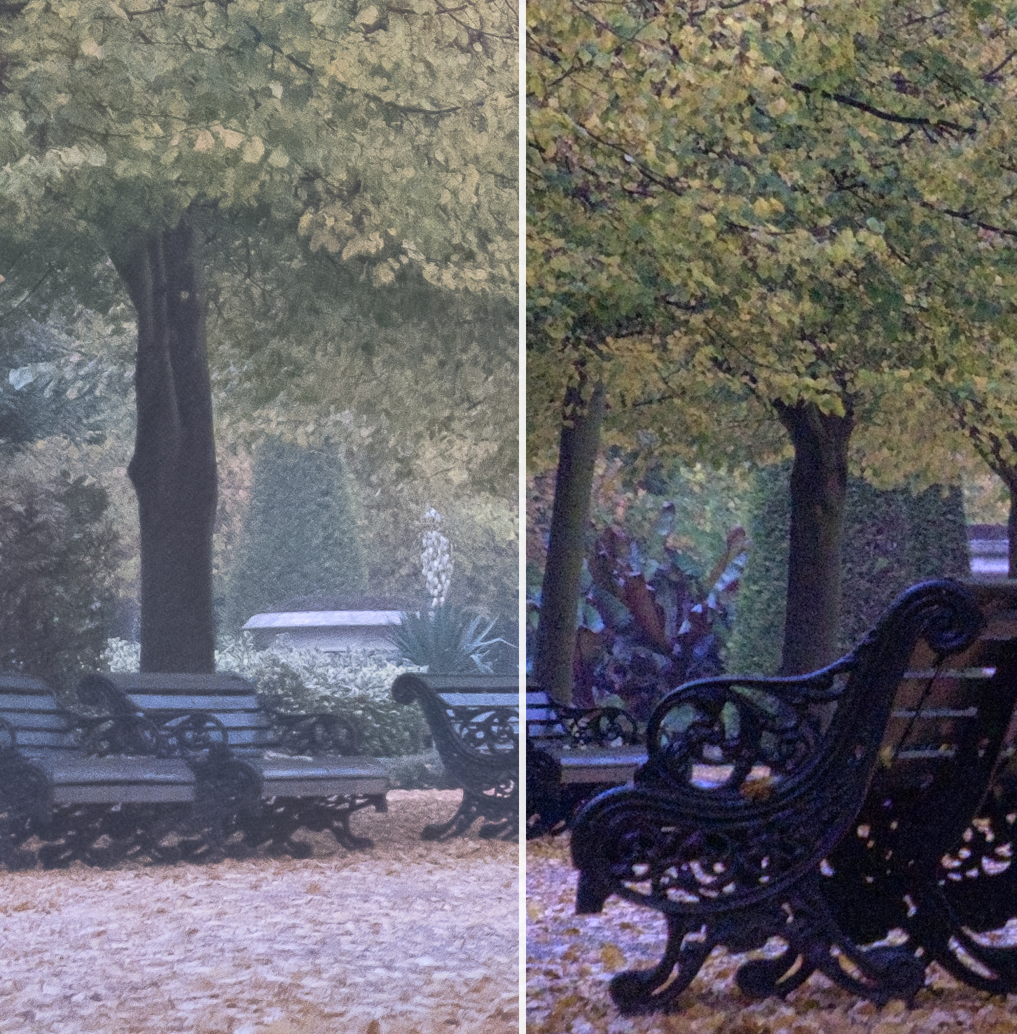 Fuji X-T2 RAW Processed with Adobe Lightroom CC on the left and MacPhun Luminar on the right.