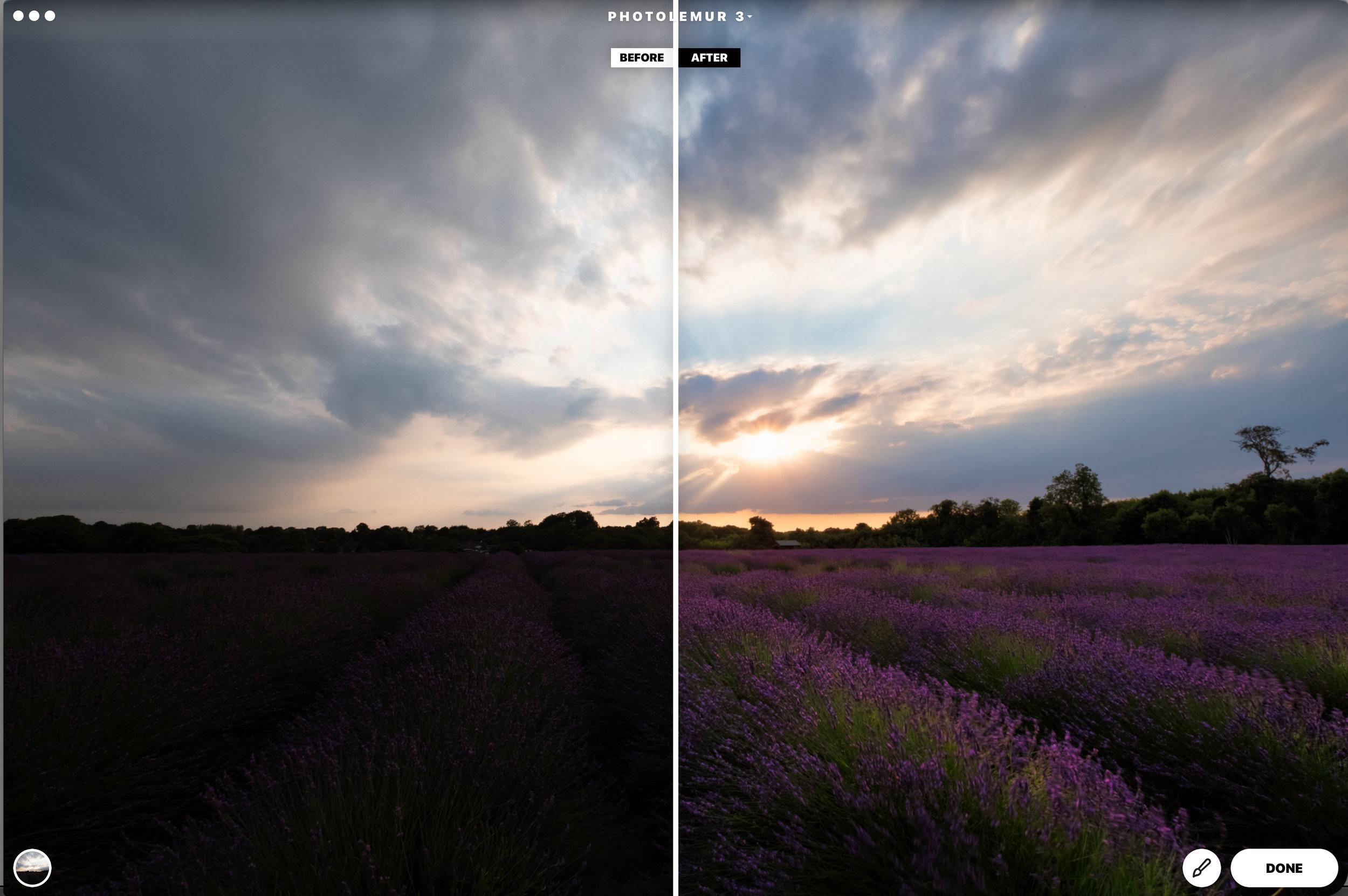 Lavender Field Edited in Photolemur 3