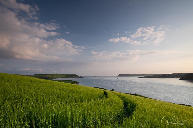 Fuji - Cornish Coast Un-Edited RAW file - Before