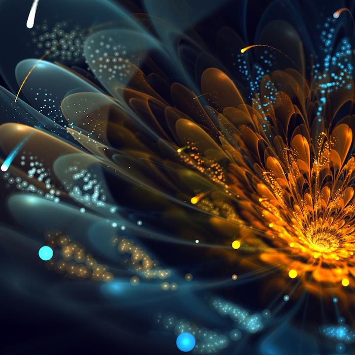 fractalflowers06.png