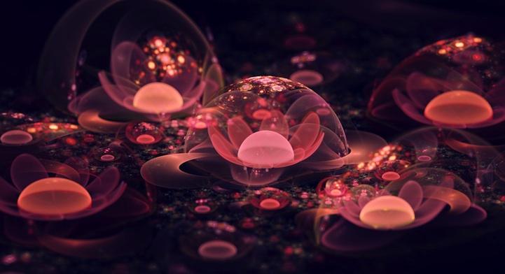 fractalflowers05.jpg