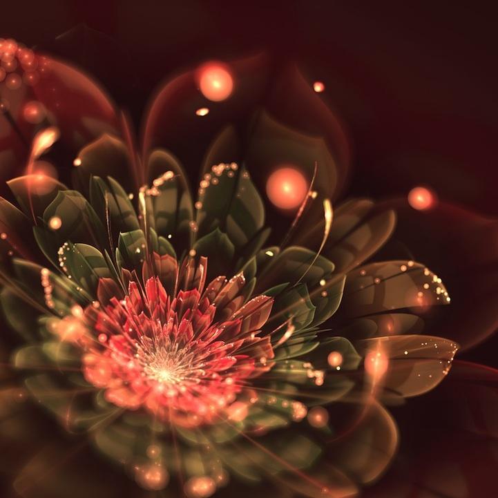 fractalflowers04.jpg
