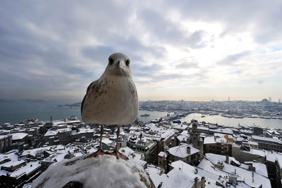 Instanbul, Turkey Jan 9