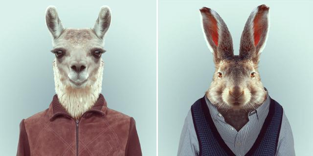 Fashion-Zoo-Animals3.jpg