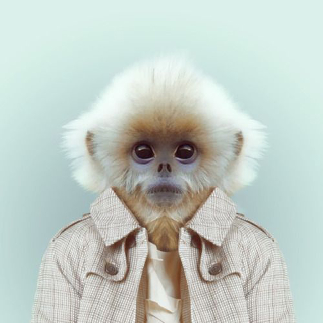 Fashion-Zoo-Animals9.jpg