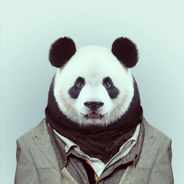 Fashion-Zoo-Animals10.jpg