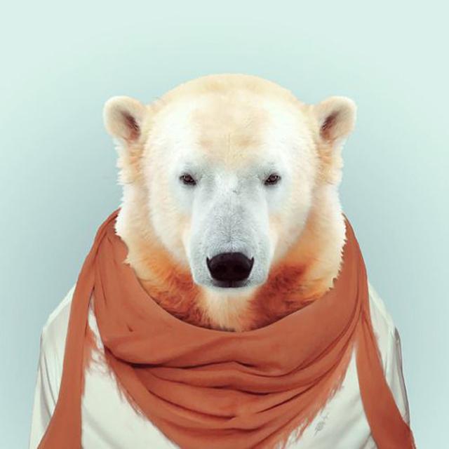 Fashion-Zoo-Animals13.jpg