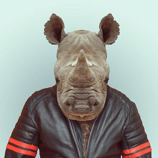 Fashion-Zoo-Animals17.jpg