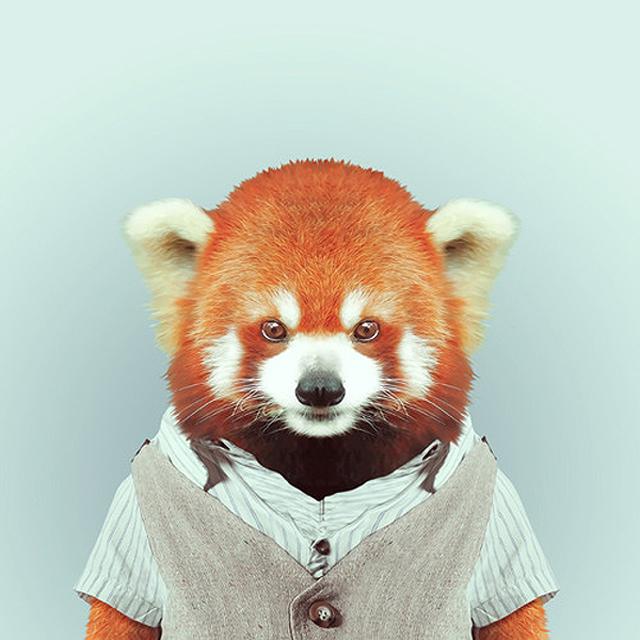 Fashion-Zoo-Animals22.jpg