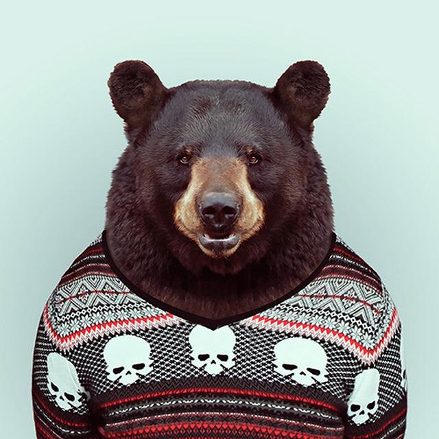 Fashion-Zoo-Animals23.jpg