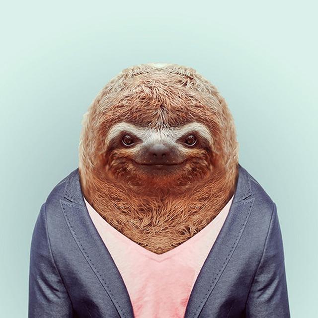 Fashion-Zoo-Animals24.jpg