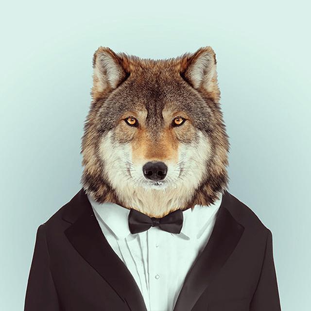 Fashion-Zoo-Animals26.jpeg