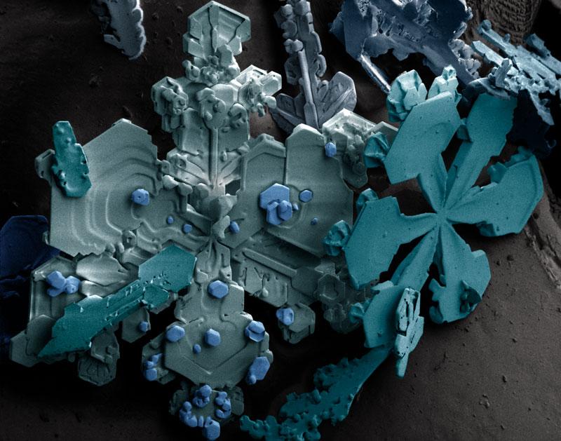 snow_crystals.jpg