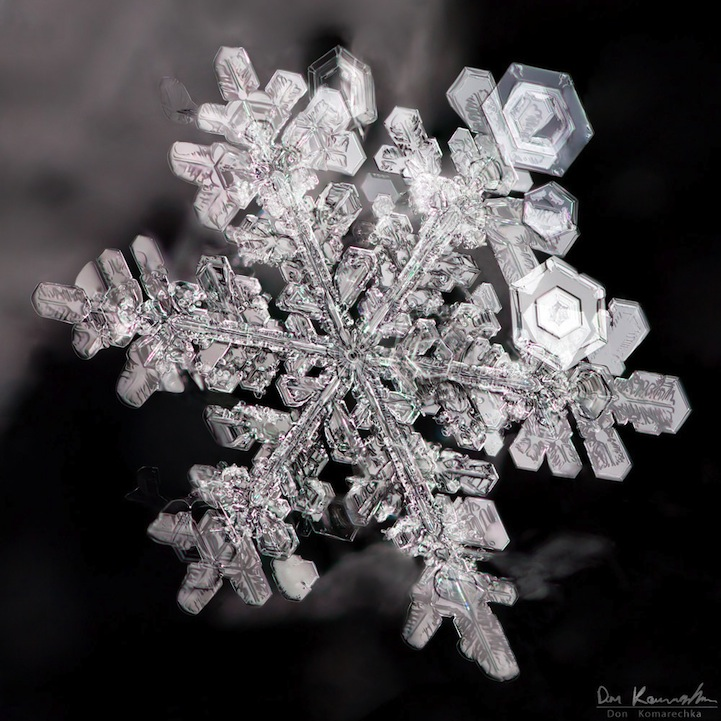 snowflake08.jpg