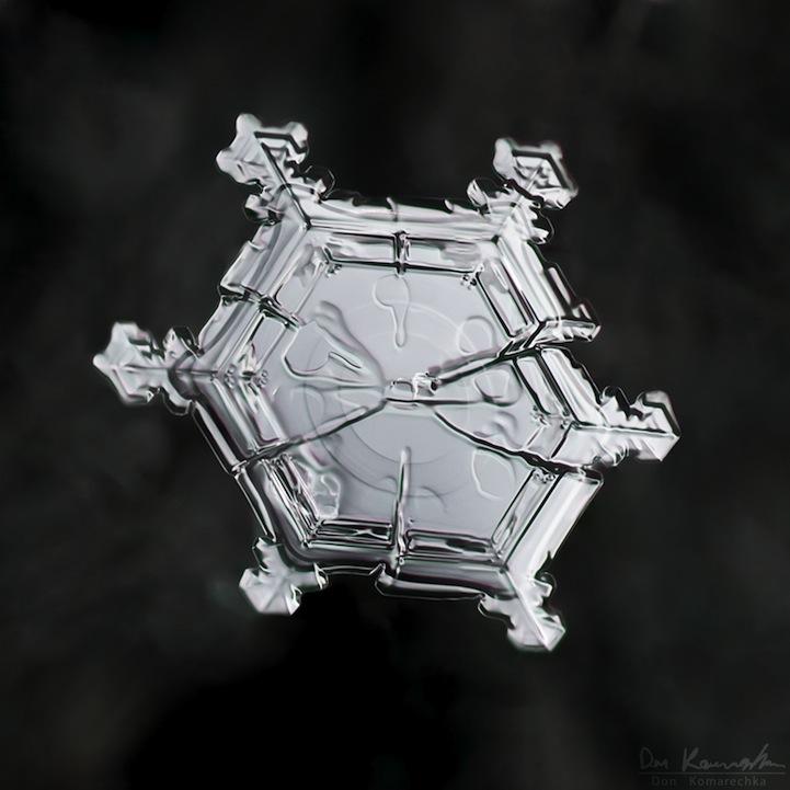 snowflake05.jpg