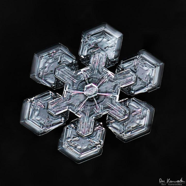 snowflake04.jpg