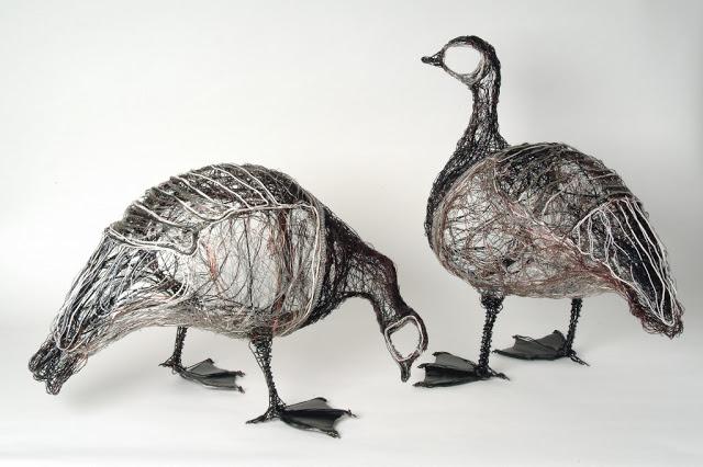 6barnacle-geese-1024x682.jpg