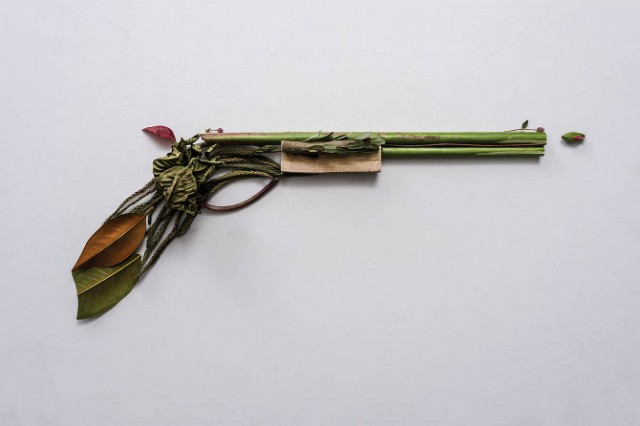 Weapons-made-of-Plants8-640x426.jpg