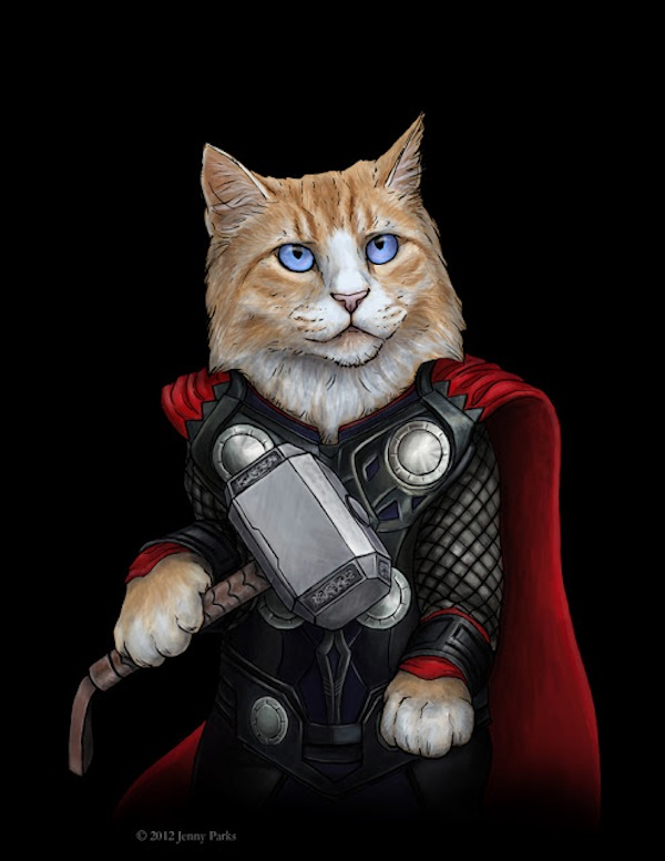 2-cat-hero-Jenny-Parks.jpg