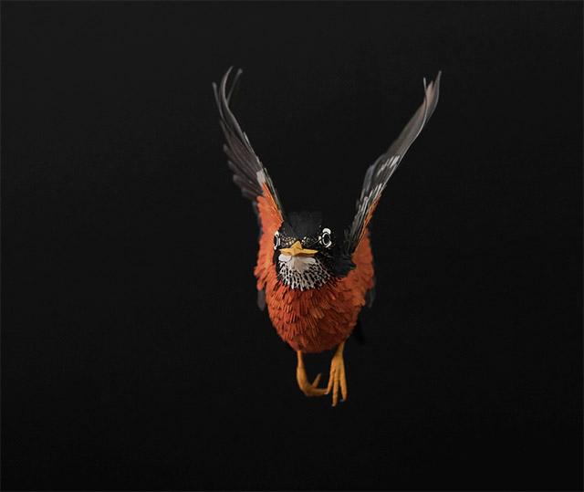 birds-21.jpg