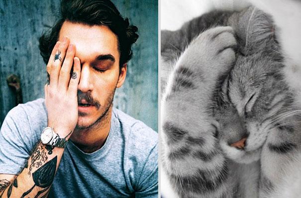 des-hommes-et-des-chatons-men-and-cats-5.jpg