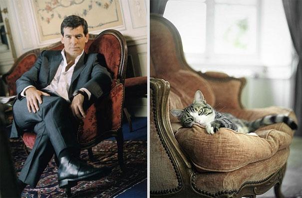 des-hommes-et-des-chatons-men-and-cats-9.jpg