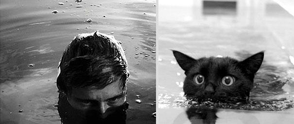 des-hommes-et-des-chatons-men-and-cats-14.jpg