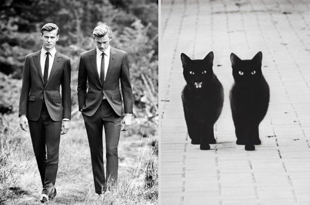 des-hommes-et-des-chatons-men-and-cats-35.jpg