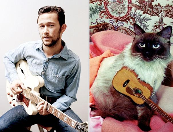 des-hommes-et-des-chatons-men-and-cats-16.jpg