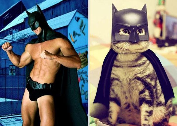 des-hommes-et-des-chatons-men-and-cats-20.jpg