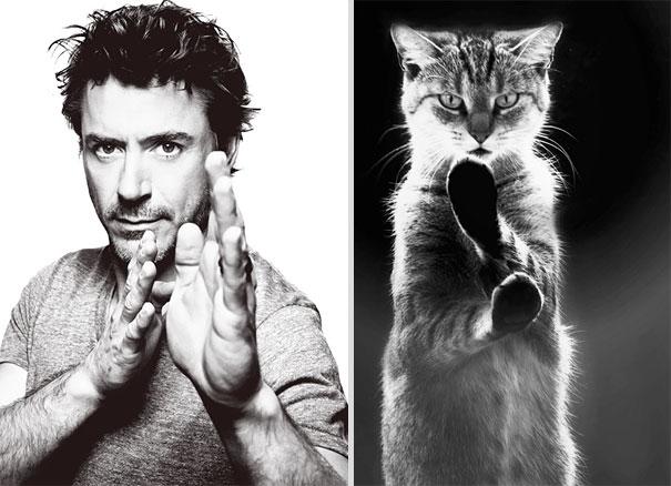 des-hommes-et-des-chatons-men-and-cats-21.jpg