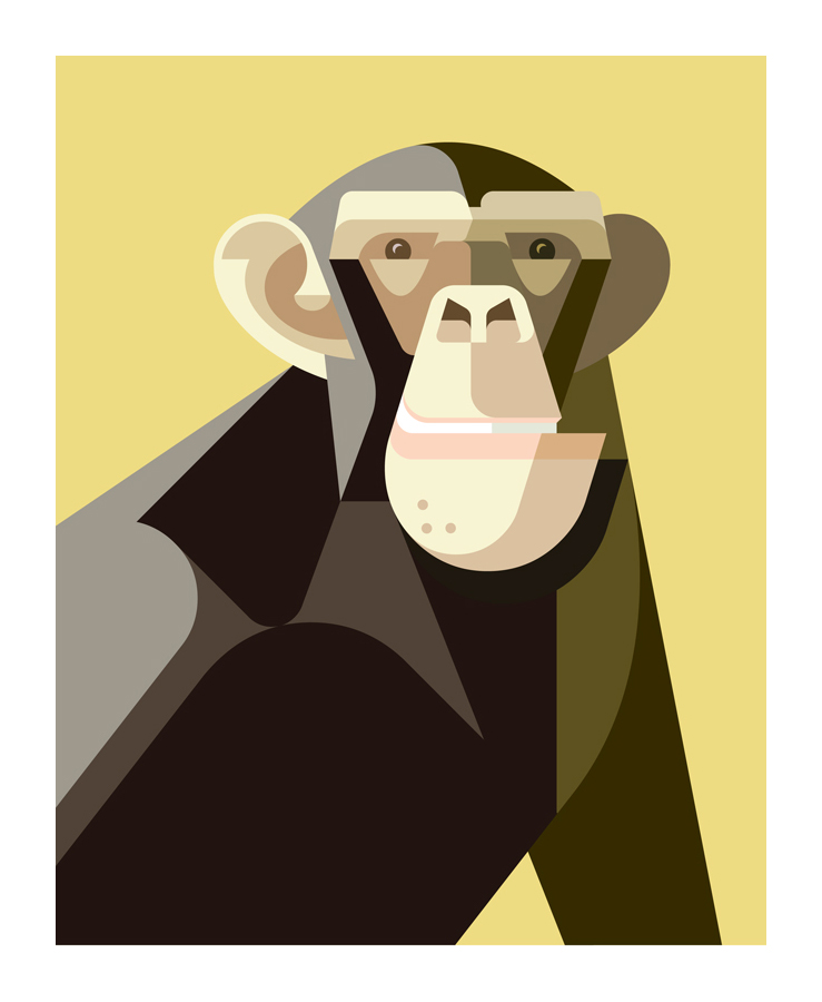CommonChimp_Banana.jpg