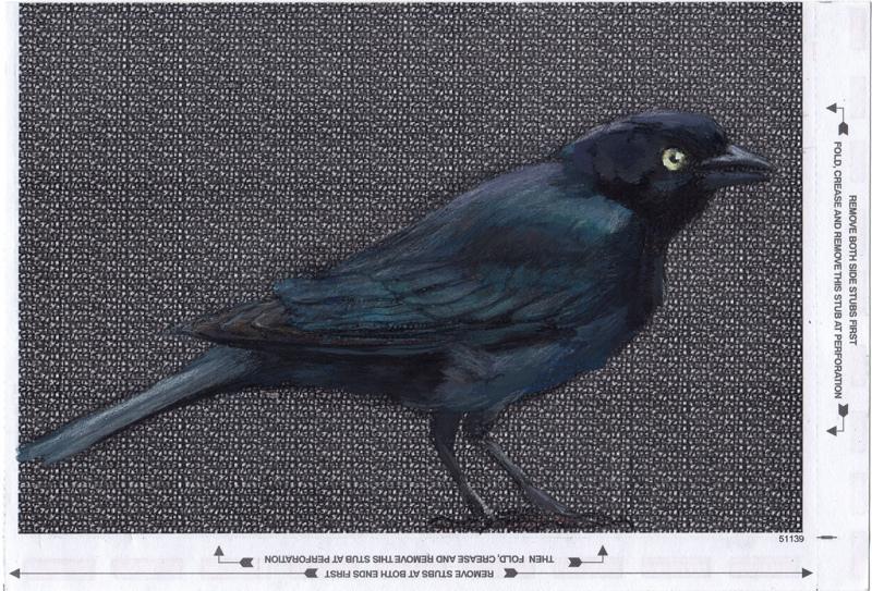 birds-4.jpg