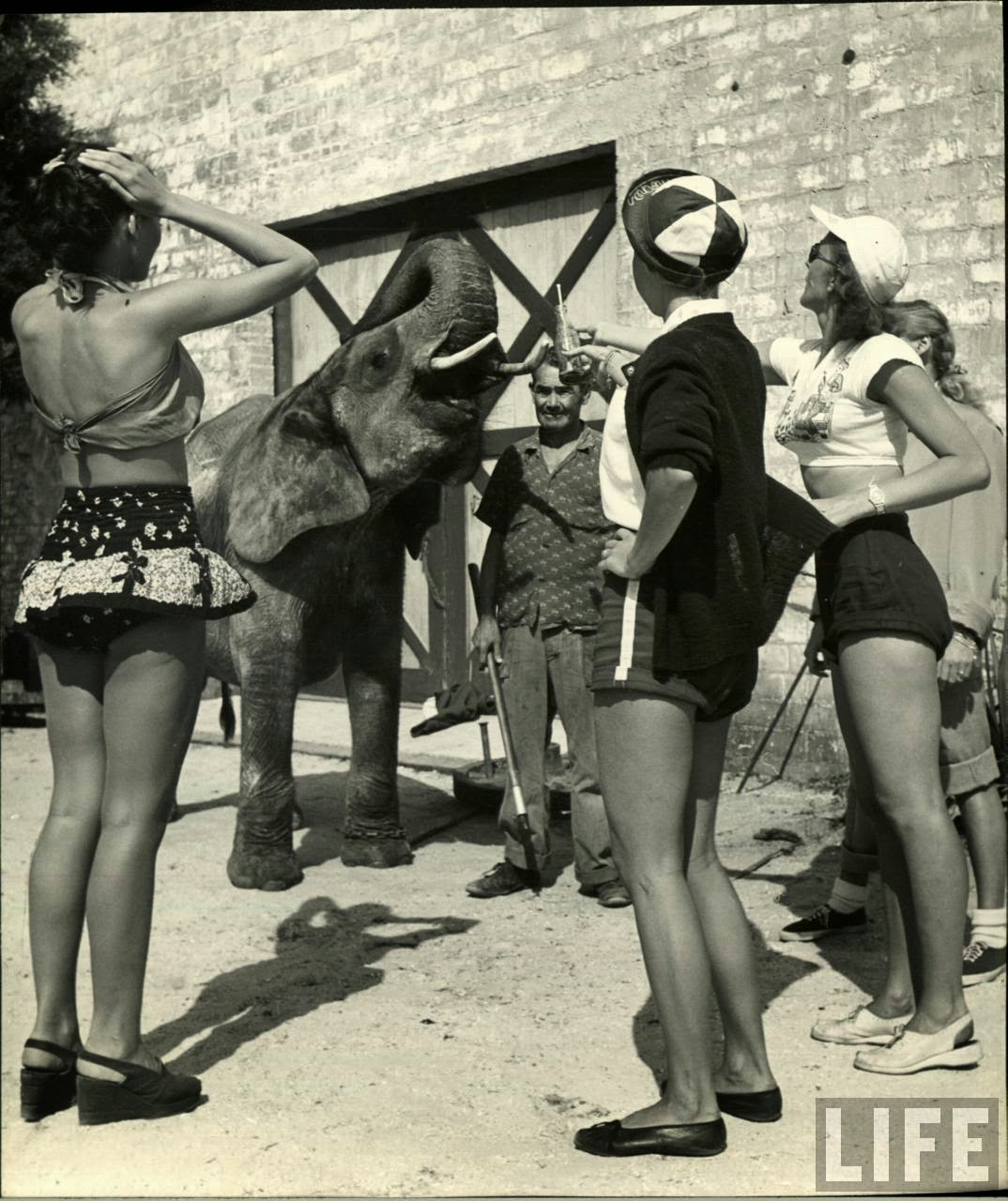 Daily Life of Circus Girls in Sarasota, Florida, ca. 1949 (4).jpeg