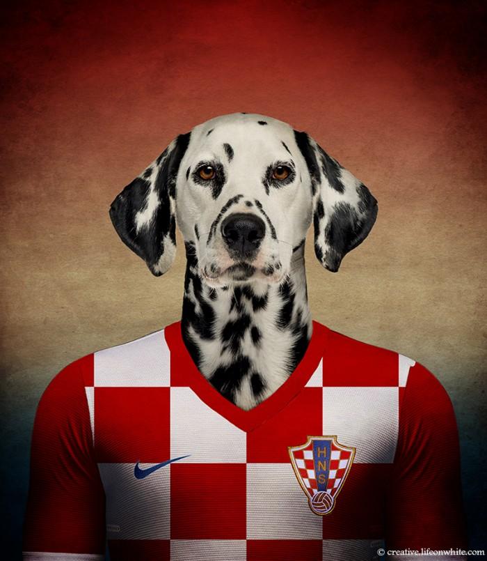 Croatia - Dalmatian