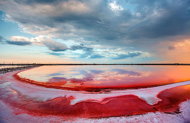 Rotten-Sea-by-Sergey-Anashkevych-1.jpg