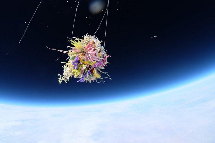 makoto-azuma-EXOBIOTANICA-BOTANICAL-SPACE-FLIGHT-5.jpg