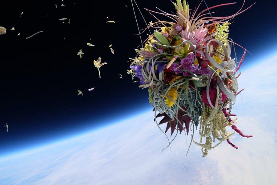 makoto-azuma-EXOBIOTANICA-BOTANICAL-SPACE-FLIGHT-3.jpg