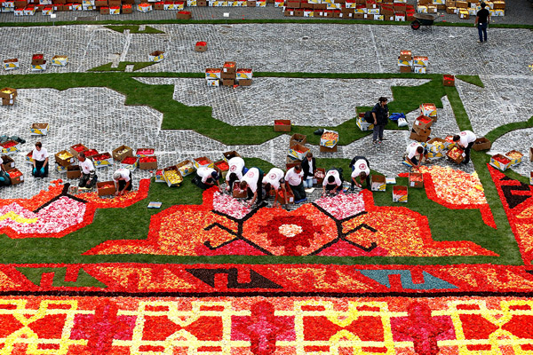 Brussels-Flower-Carpet-2014-4.jpg