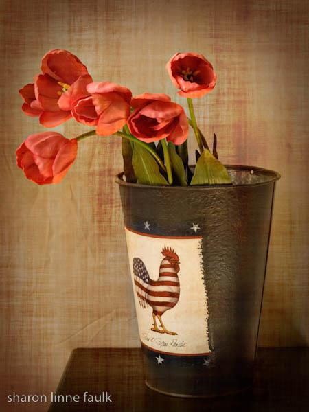 slf canned tulips.jpg