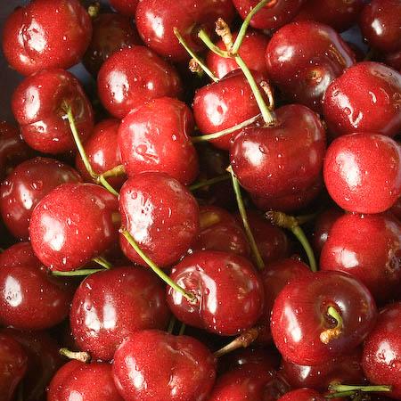 slf cherries.jpg