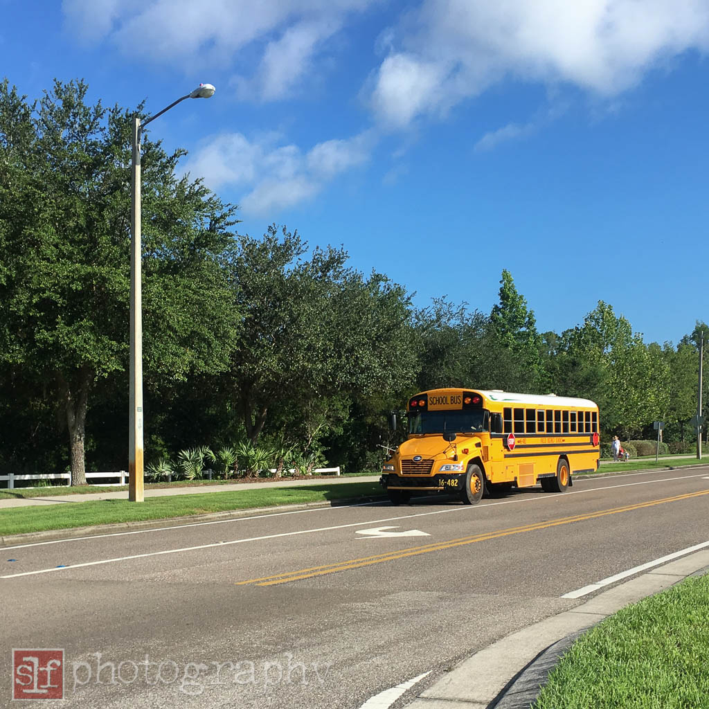 not sure why the school buses were out. i saw two and assume they must be out to test drive the summer school routes.