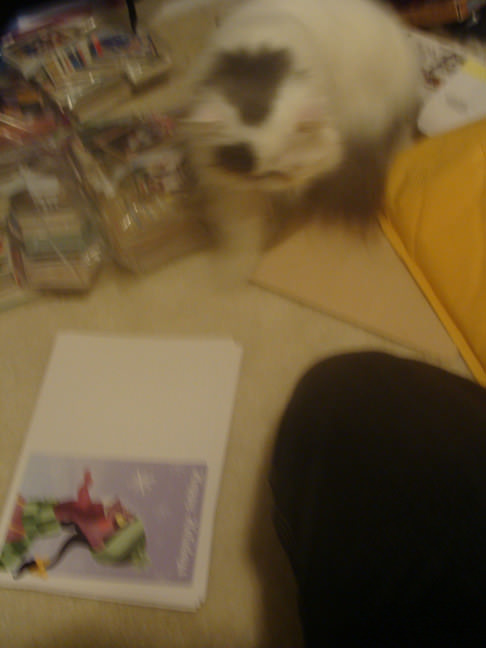 White Fluffy Kitty attacking the Left 4 Dead Christmas cards.