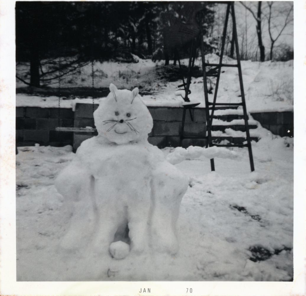 A snowcat my mom made when she was 13 years old. She turned 57 on November 25th, 2013.