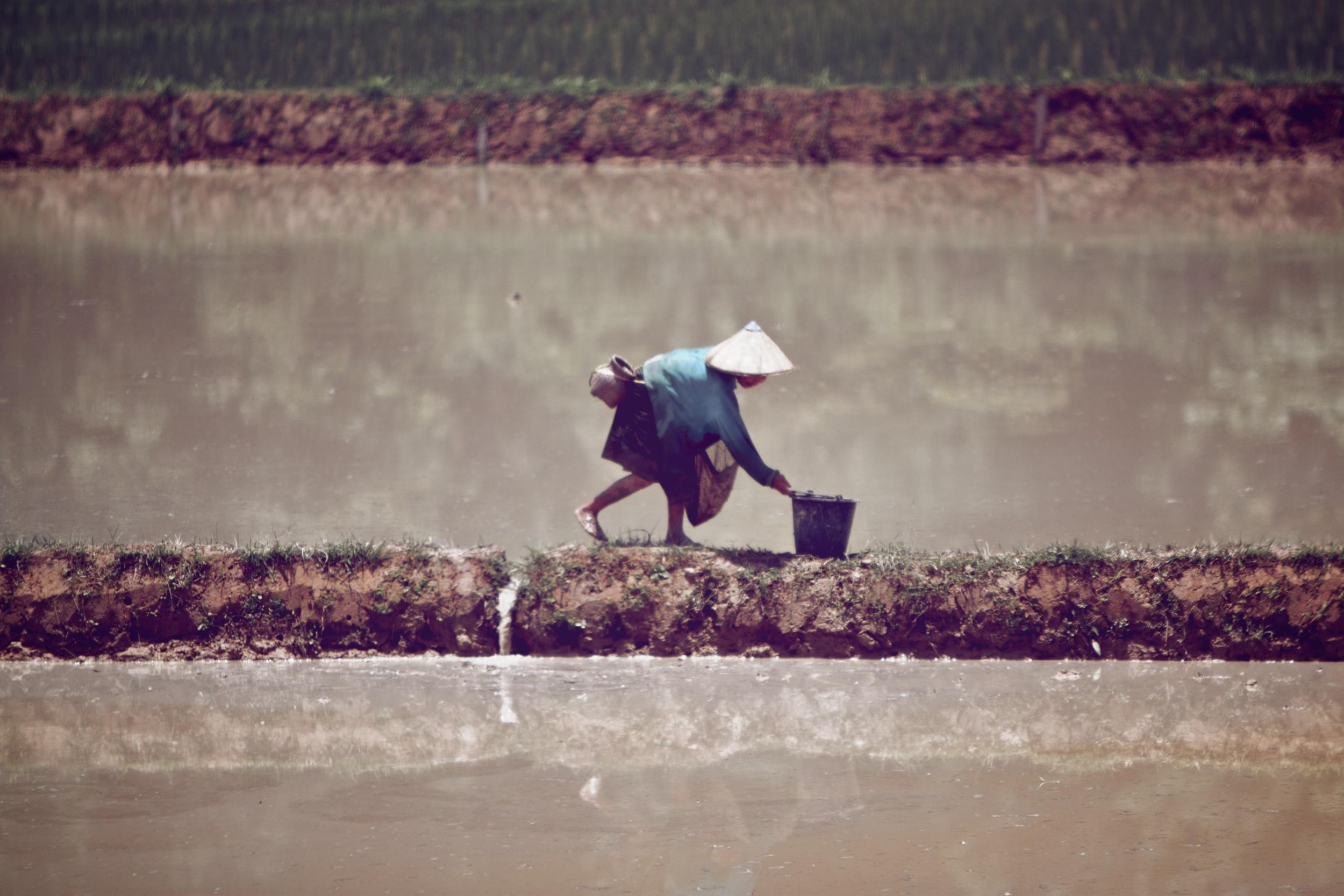 Farmer near Vang Vieng Laos.jpg