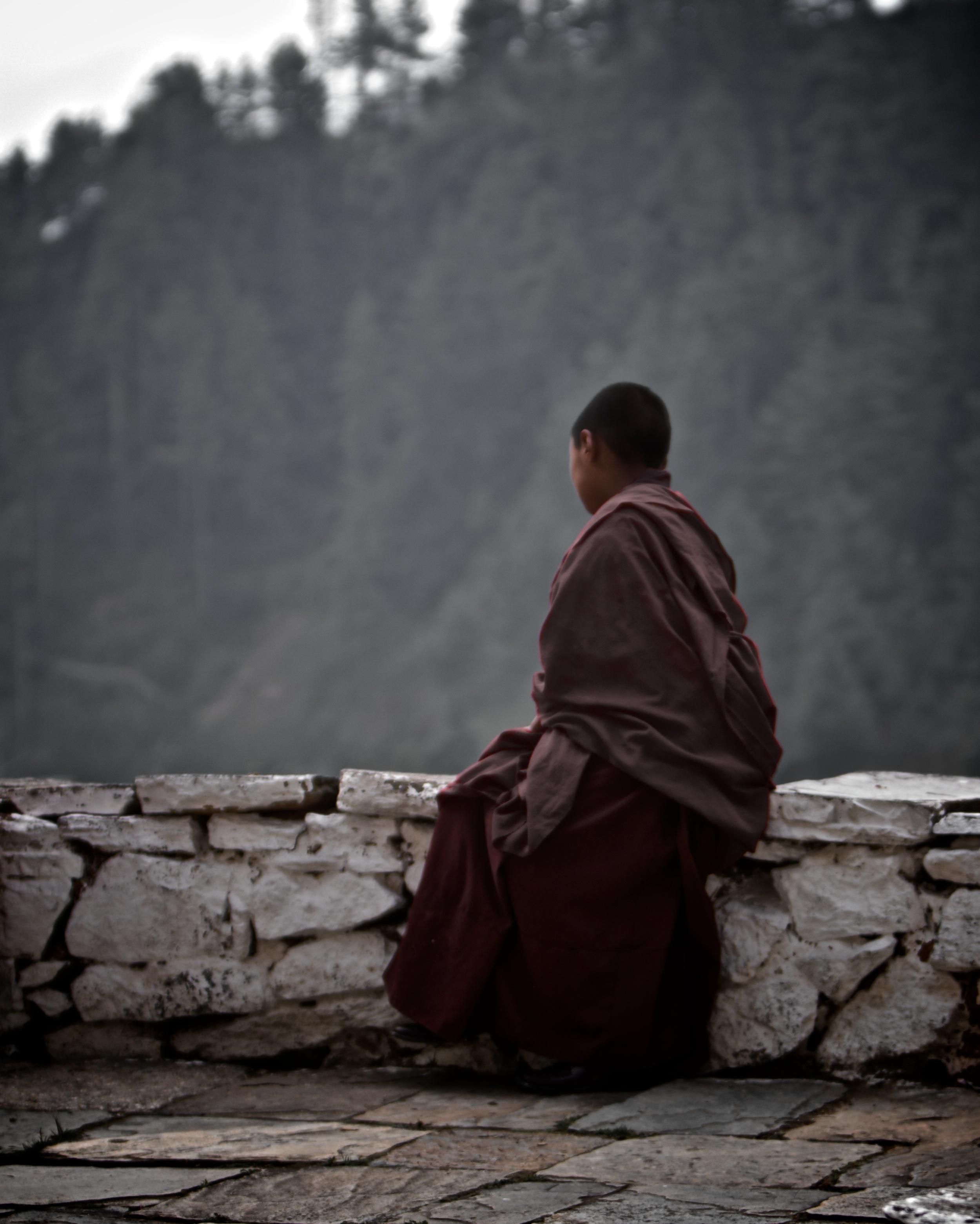 Solitary moment.jpg