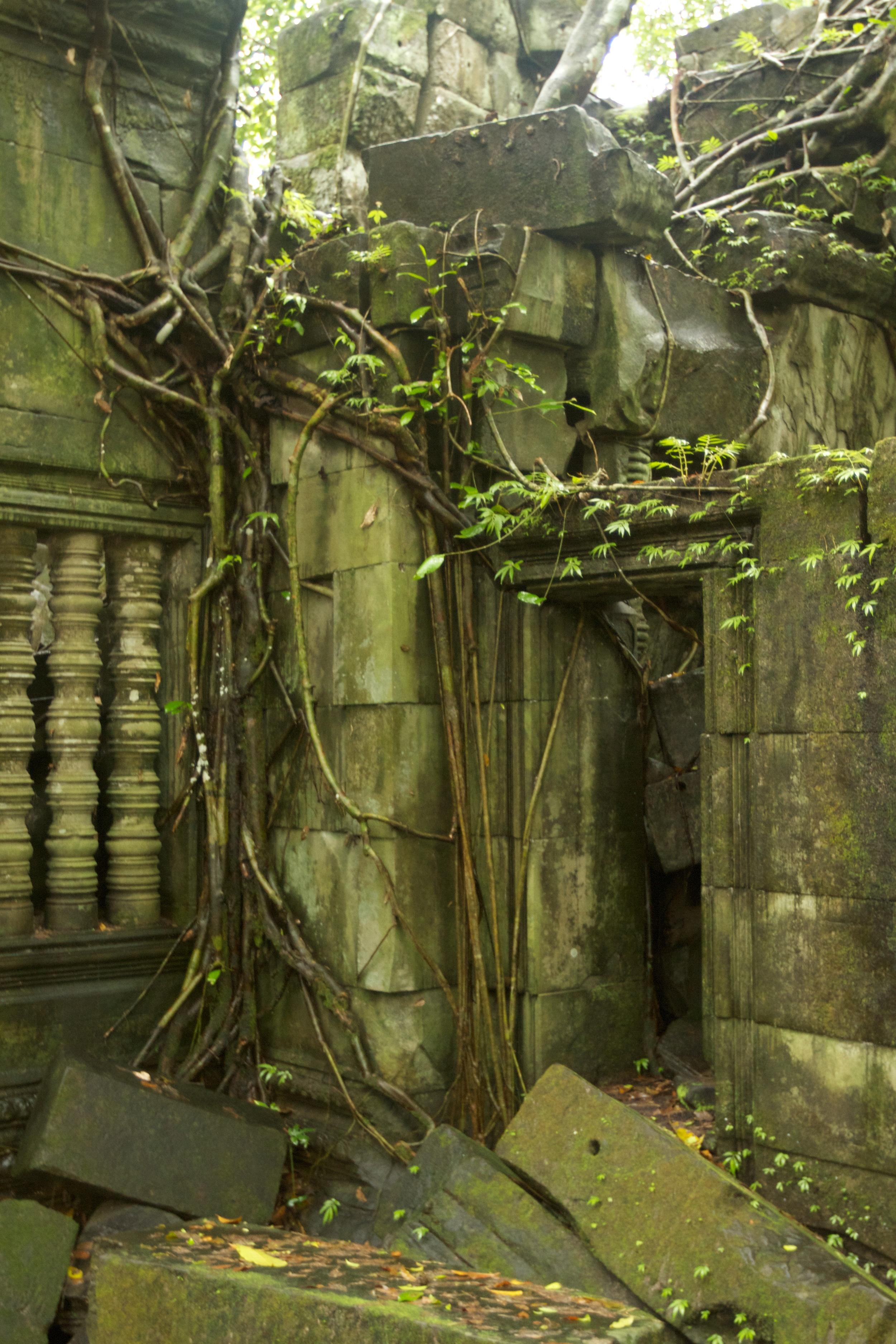Overgrown door at Beng Mealea.jpg