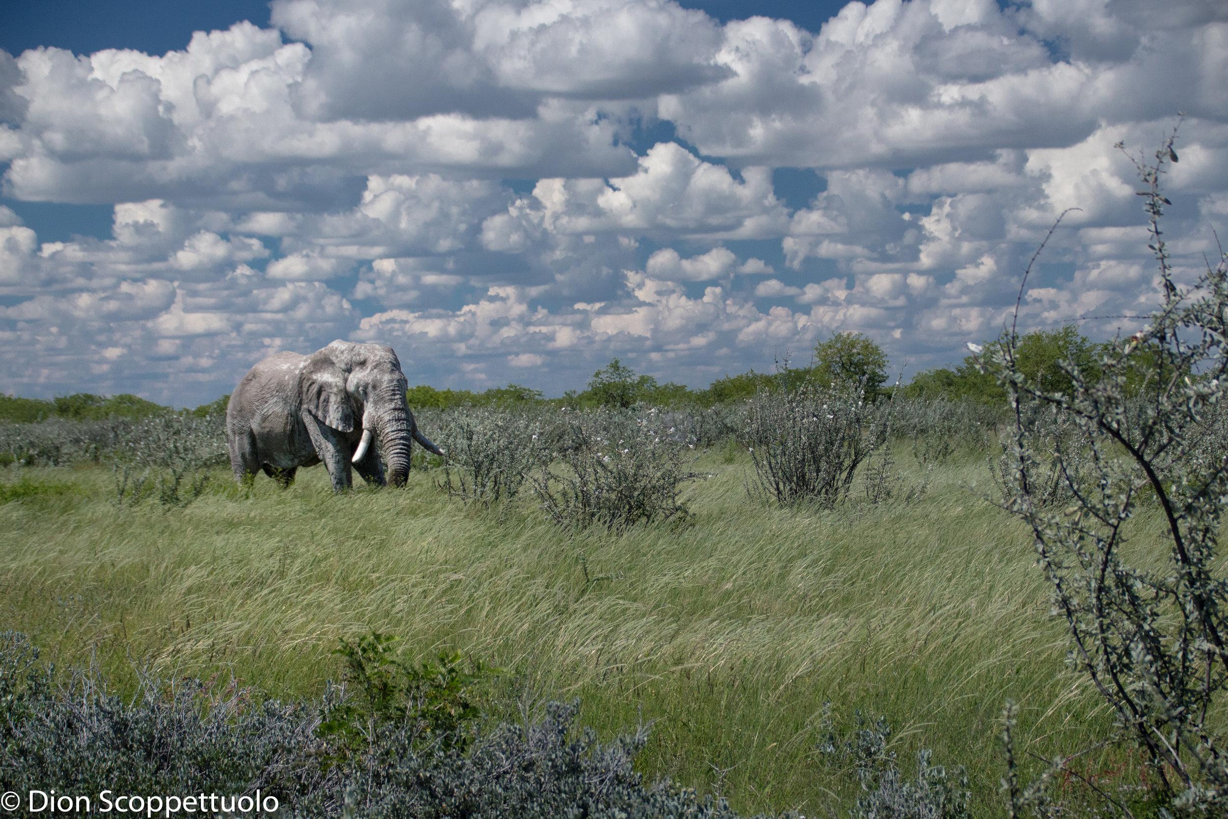 Namibia-84.jpg